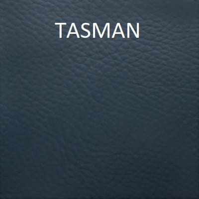 Leather Colour Dye Paint - Auto Car - Tasman - Leather Hero